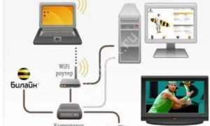 Кабельное телевидение билайн: подключить, тарифы